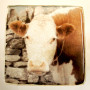 cow art glass